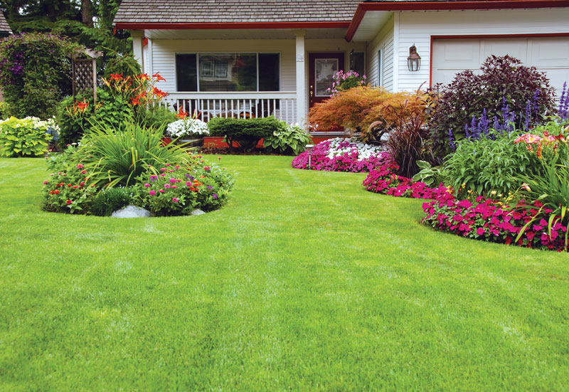 5 lawn care tips for spring, garden tools, grass seed, best prices in watsonville, freedom, central coast ace