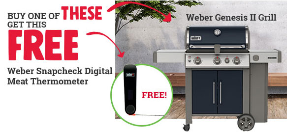 free meat thermometer, ace hardware in watsonville, weber grill on sale